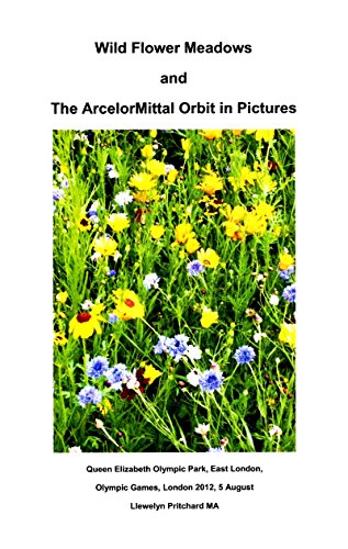 Wild Flower Meadows and The ArcelorMittal Orbit in Pictures (Fotoalben 18)