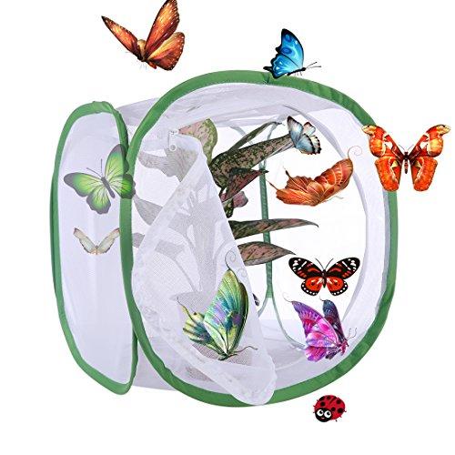 Macium Faltbares Schmetterlings- und Insektennetz, Schmetterlings Habitat Käfig Pop-Up Schutz Käfig - 30 x 30 x 30cm (Weiß + Grün)