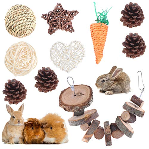 FADACAI 10 piezas de juguete para masticar hámster de madera natural para mascotas, cuidado dental, accesorios para el cuidado dental, juguete para cobayas, ratas y conejos