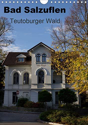 Bad Salzuflen - Teutoburger Wald (Wandkalender 2021 DIN A4 hoch)