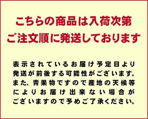 紅光『ハワイ産パパイヤ大箱8-12玉入』