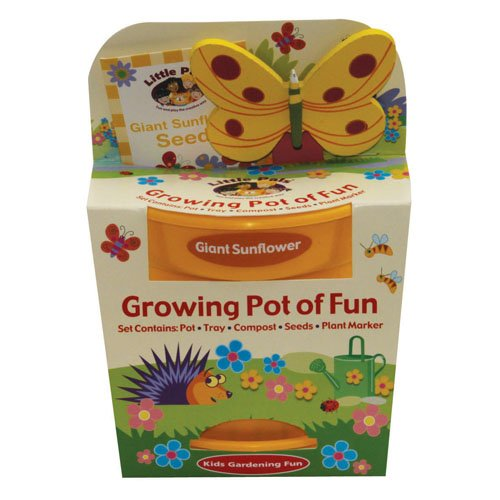 Children's Grow Your Own Giant Sunflowers with Butterfly Marker