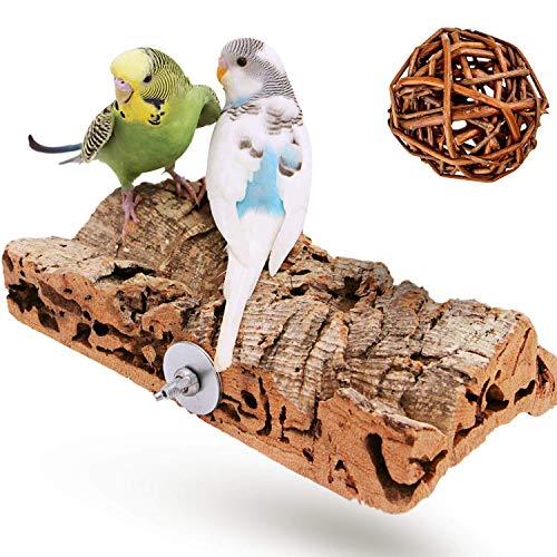 Vogelgaleria Premium Korksitzbrett für Vögel wie Wellensittich Nymphensittich & GRATIS Knabberball | EIN Sitzbrett aus Kork sollte als Zubehör in jeden artgerecht bestückten Käfig |20x10cm groß
