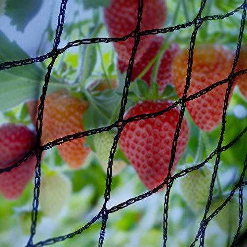 Elixir Gardens Bird Netting Black 4m x 4m | Widths Available 2m 4m 6m 8m 12m 14m 20 Metre ideal Pond Safety Fruit cage Veg net Gardens