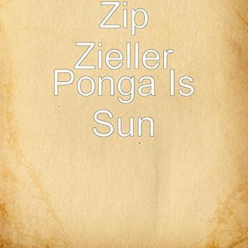 Ponga Is Sun