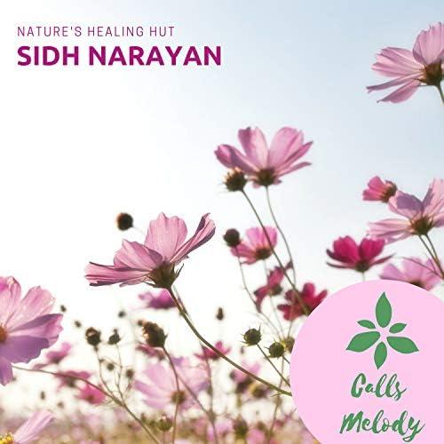 Sidh Narayan