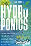 Hydroponics: The Beginners Guide For Creative People On How To Build A Hydroponic Garden System For Grow Vegetables Plants And Fruits In Water, Without Soil