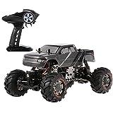 Best Rc Rock Crawlers - Goolsky HBX 2098B 1/24 2.4GHz 4WD 4WS Devastator Review