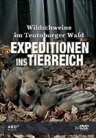 Expeditionen ins Tierreich - Wildschweine im Teutoburger Wald