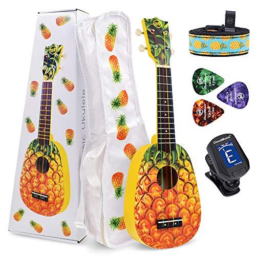 Top pineapple teacher bag for 2020