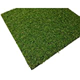 Cesped Artificial Terraza Plus 20 Mm Rollo De 2X4