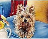 YYFTT Pintura por Números para Adultos y Niños, Dibujos para Pintar con NúmerosTraje sofá Perro-Combo Box