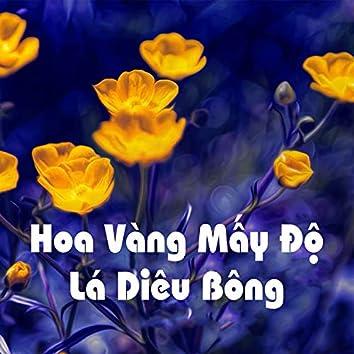 Hoa vàng mấy độ