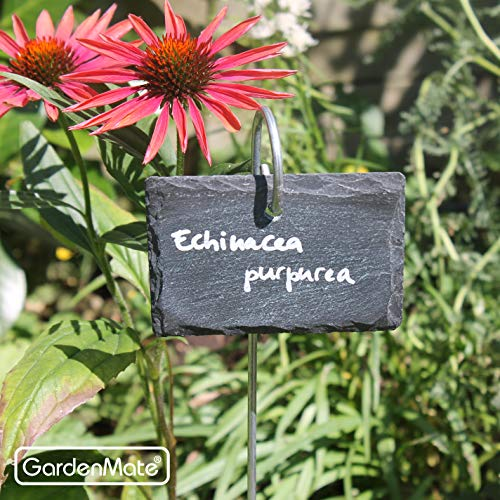 GardenMate® - Conjunto de Etiquetas para Plantas con Soporte de ...
