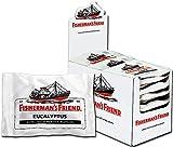 Fisherman's Friend Eucalyptus | Karton mit 24 Beuteln | Menthol und Eukalyptus Geschmack | Mit Zucker | Für frischen Atem