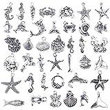BronaGrand 40 Pieces Mixed Antique Silver DIY...