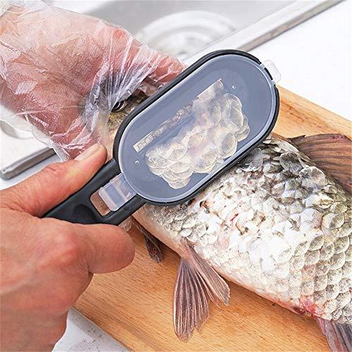Inox 1 pcs peau de poisson Brosse Raclage Pêche échelle Brosse Accessoires de cuisine poisson Couteau de cuisine Nettoyage Peeler Gadgets ambidextre (Color : Random)