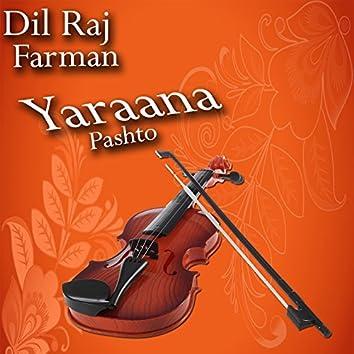 Yaraana, Vol. 5