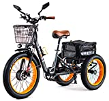 3SCORE Electric Fat Trike 750W Motor and 48V Lithium Rechargeable Battery - Etrike 24 Inch Fat Tire - Foldable Electric Cruiser Tricycle (Matt Gray, Fat Tire Etrike)