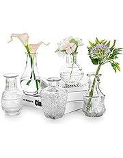 Glazen Vaas Voor Bloemen, Set Van 5 Transparante Vazen vintage Bud Sweet Mini Pea Vaas Voor Tafel, Middelpunt, Binnendecoratie, Bruiloft