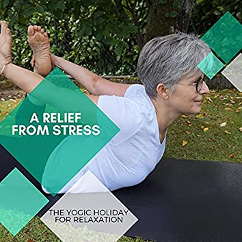 A Relief From Stress - The Yogic Holiday For Relaxation