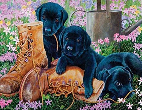 HAON Leren laarzen en jonge zwarte honden in de tuin Verf op nummer Kits Voorgedrukt patroon DIY Handgemaakt digitaal schilderen Kleuren 40x50cm Frameloos