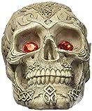 Penn Plax Skull Grazer Ornament, Large
