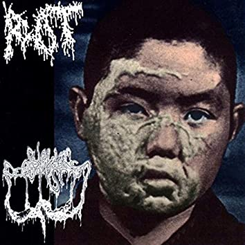 Split with Rot