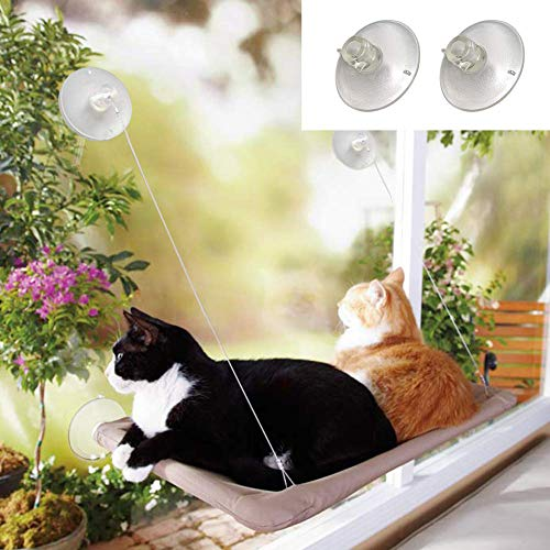 Angela&Alex Window Cat Bed, Cat Window Seat Window Perch Bed Hammock with 2 Extra Replaceable Suction Cups Space Saving All-Around 360° Sunbath Holds Up to 55 lbs for Any Cat Size