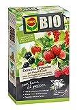 COMPO BIO Concime Organico per Piccoli Frutti, Con Lana di Pecora, Consentito in agricoltura biologica, 750 g