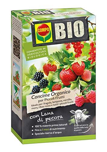 Compo BIO Fertilizante orgánico para frutas pequeñas, con lana de oveja, permitido en la agricultura orgánica, 750 g