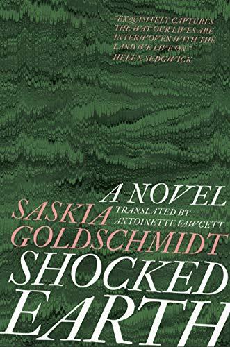 Shocked Earth (English Edition)