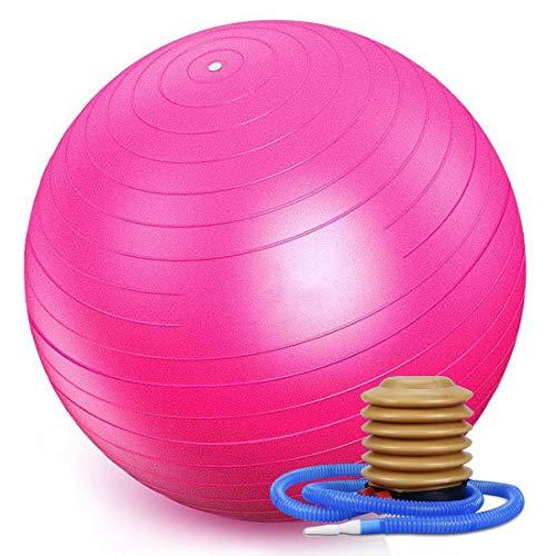 WTSMJD Pelota de Gimnasio para Ejercicio (Varios tamaños y Colores) para la Estabilidad y la Yoga,Rosa,85cm