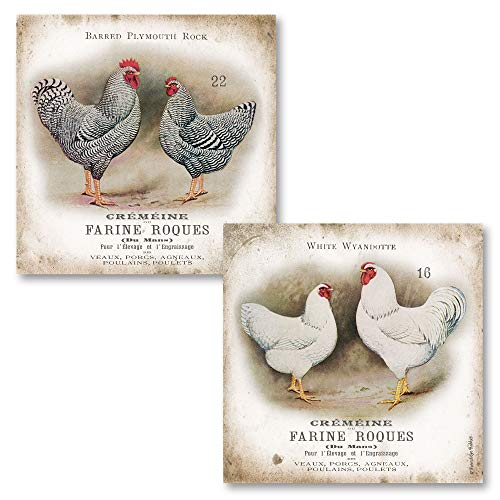 Vintage French Chicken and Rooster Pairs; French Country Decor; Two 12 x 12 Poster Prints