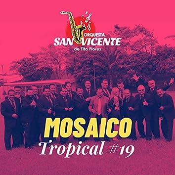 Mosaico Tropical 19