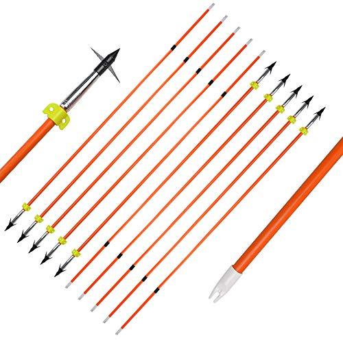 AMEYXGS 3/6 Piezas Flechas de Pesca con Arco Flechas de Pesca de Fibra de Vidrio con Control Deslizante de Seguridad para Pesca y Caza
