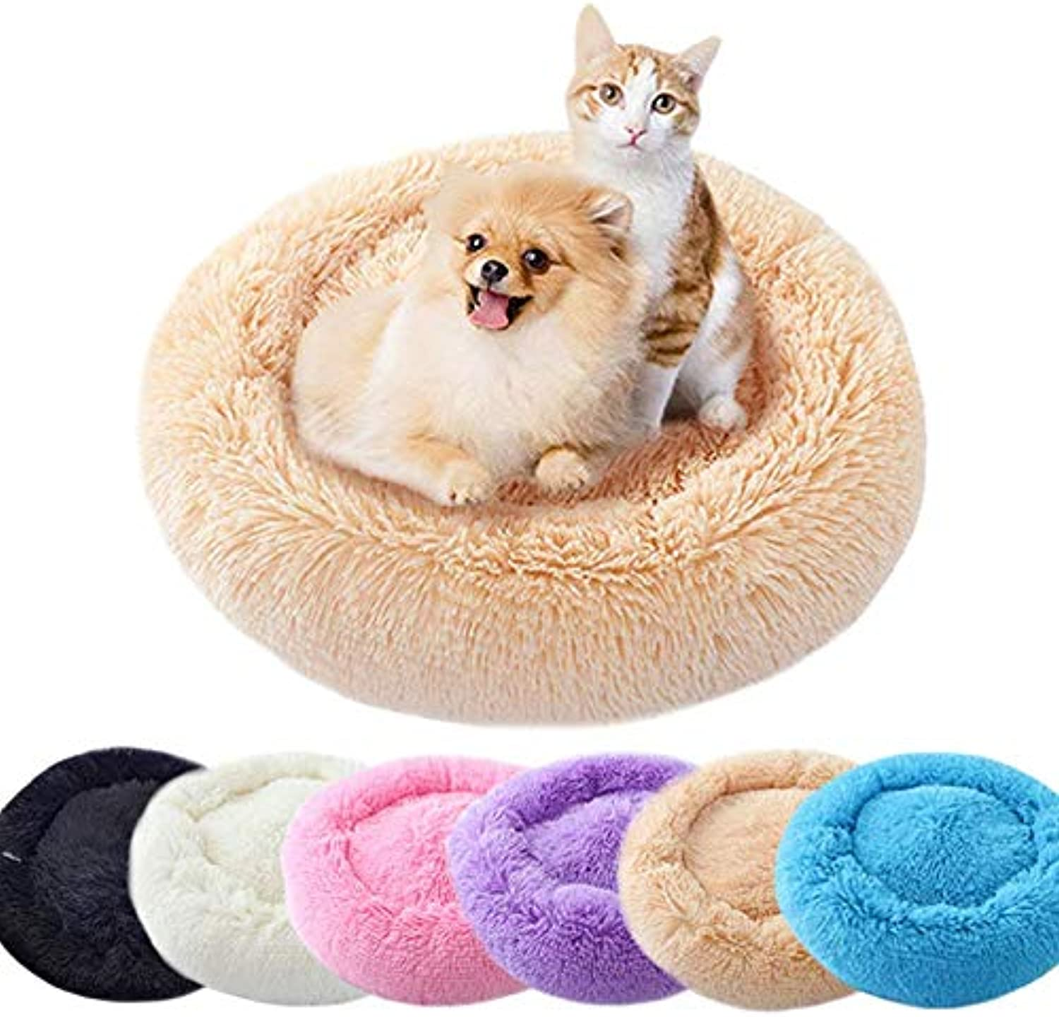 Jenniver 2019 New Bed for Dogs and Cats (11.81  Inner) (Black)