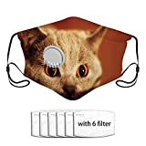 Qefgjbw Kitten Face Eyes Cover Set Paño facial reutilizable Filtro de repuesto de carbón activado facial lavable con válvula transpirable