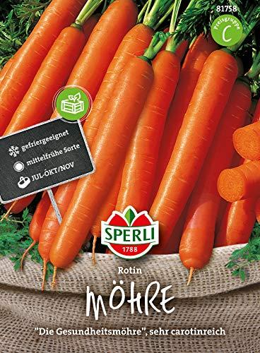 Sperli Premium Möhren Samen Rotin   Die Gesundheitsmöhre carotinreich   Karotten Samen für ca. 750 Möhren