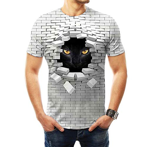 T-shirts Creative Wall Pink Floyd 3d Printing Loose Short Sleeve Large Size Top Round Neck Couple T-shirt, XL