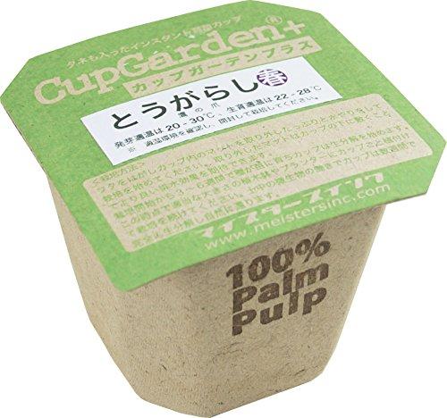 """カップが生分解する100%オーガニック栽培キット カップガーデン""""果菜"""" (とうがらし)"""