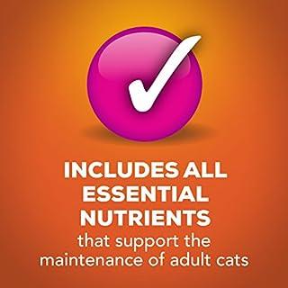 شراء Purina Friskies Pate Wet Cat Food - (24) 5.5 oz. Cans