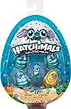 Hatchimals CollEGGtibles 4 Pack + Bonus - Season 5 - Figuras de...