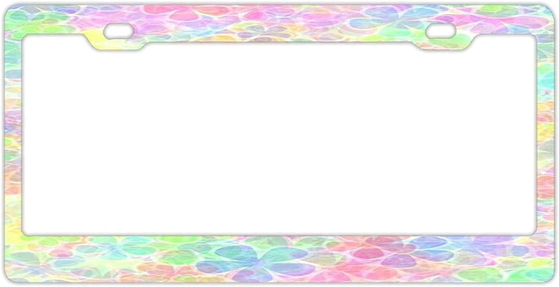 DKISEE - License Plate Frame 12