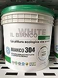 BIANCO 304 LT.12