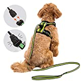 Easy Lock Dog Harness and Leash Set for Small Large Dogs Puppy Breed, Magnetic Clasp Reflective Vest with Training Leash One Hand Easily Connect