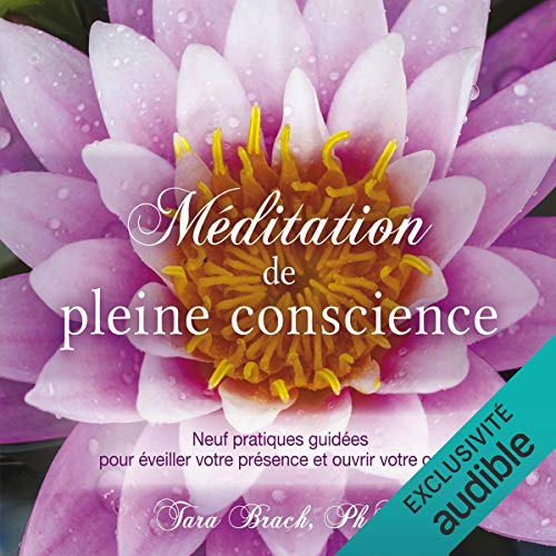 Méditation de pleine conscience cover art