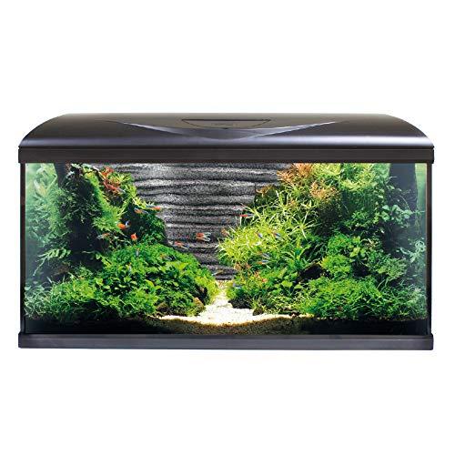 Amtra System 80 LED Black Sfondo 3D Roccia/Acquario Completo di Illuminazione LED, Filtro e riscaldatore/cm 80x32x48 / 85 Litri