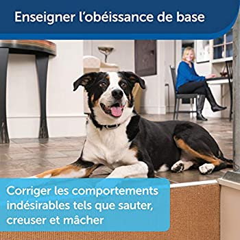 PetSafe - Collier de Dressage avec télécommande digitale pour 2 Chiens, portée de 300 m, Rechargeable, Étanche, Ton/Vibration et 15 niveaux de Stimulation électrostatique
