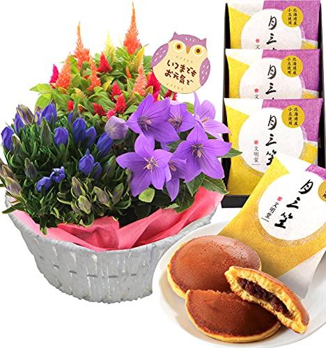 花のギフト社 敬老の日 花 秋のお花 花とどら焼き 敬老の日お花 敬老の日花 敬老の日どら焼き お花